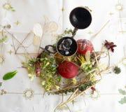 Gesierd rood paasei met verse wilde bloemen en kruiden stock foto