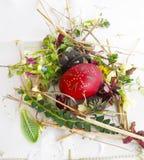 Gesierd rood paasei met verse wilde bloemen en kruiden royalty-vrije stock foto