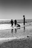 Gesilhouetteerd familiespel in de golven Stock Foto