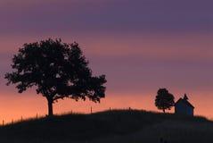Gesilhouetteerde bomen op horizon Stock Foto
