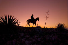 Gesilhouetteerde Cowboy Stock Afbeelding
