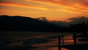 Gesilhouetteerde mensen die een strand van Maui bewonderen stock footage