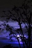 Gesilhouetteerde moonrise in himachal India Royalty-vrije Stock Foto