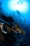 Gesilhouetteerde scuba-duikers Royalty-vrije Stock Afbeelding