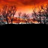 Gesilhouetteerde Zonsondergang Stock Foto