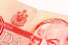 Geslagen Dollar Royalty-vrije Stock Foto