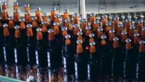 Gesloten flessen bier die door de transportband opnieuw worden gevestigd stock videobeelden