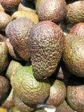 Gesloten omhoog vers Avocadofruit Royalty-vrije Stock Foto's