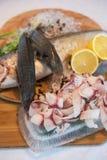 Gesneden bevroren ruwe vissen van witte vis Royalty-vrije Stock Fotografie