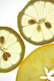 Gesneden Citroen en Appel die op wit wordt geïsoleerdd Royalty-vrije Stock Afbeeldingen