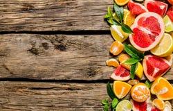 Gesneden citrusvrucht - grapefruit, sinaasappel, mandarijn, citroen, kalk met bladeren stock foto's