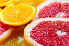 Gesneden citrusvruchten Royalty-vrije Stock Afbeeldingen