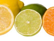 Gesneden citrusvruchten Royalty-vrije Stock Foto's