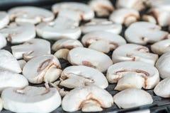 Gesneden die champignonspaddestoelen op elektrische grill of BBQ dichte omhooggaande mening worden geroosterd stock foto's