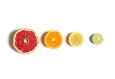Gesneden die citrusvrucht op wit wordt geïsoleerd Besnoeiingscitroen, sinaasappel, grapefruit en kalk in rij Stock Foto
