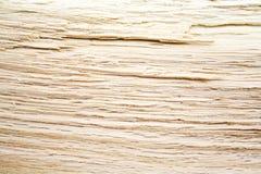 Gesneden eiken achtergrond Stock Foto
