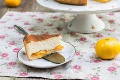 Gesneden gedeelte van gebakken kaastaart met mandarijntjes sprinkl Stock Fotografie