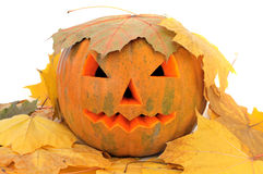 Gesneden Halloween pompoen Stock Afbeelding