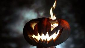 Gesneden Halloween pompoen looped stock video