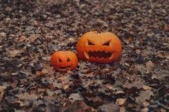 Gesneden Halloween pompoen 2 pompoenen Goede en kwade pompoen De herfst en gevallen bladeren royalty-vrije stock fotografie