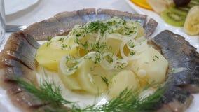 Gesneden haringen op een plaat met gekookte aardappels die met uidille worden bestrooid serverlijst in een restaurant Heerlijk vo stock video