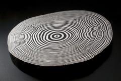Gesneden hout met zwart-witte jaarringen Stock Foto