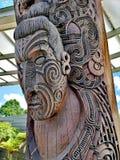 Gesneden Maori Raad royalty-vrije stock afbeeldingen