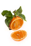 Gesneden open mandarijn Royalty-vrije Stock Afbeelding