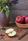 Gesneden rode appel Stock Afbeeldingen