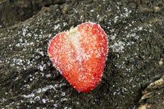Gesneden rood aardbeifruit in suger Stock Foto