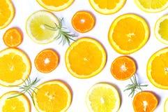 Gesneden sinaasappelen en citroen met rozemarijnpatroon Royalty-vrije Stock Afbeeldingen