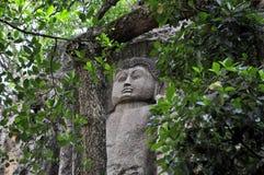 Gesneden Steen Boedha in Dowa-Tempel, Sri Lanka Royalty-vrije Stock Foto