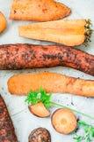 Gesneden wortel Stock Afbeeldingen