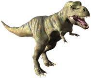 Geïsoleerde de Dinosaurusillustratie van tyrannosaurustrex Royalty-vrije Stock Fotografie