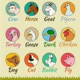 Geïsoleerde landbouwbedrijf dierlijke hoofden, Royalty-vrije Stock Afbeelding