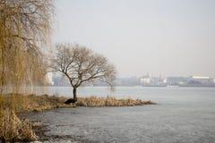 Gespeicherte Seen in der Stadt Stockfotografie