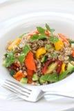Gespelde salade, insalata Di farro, Italiaanse keuken Stock Afbeeldingen