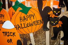 Gespenstische schwarze Katzen und festliche orange Kürbise Lizenzfreie Stockfotos