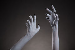 Gespenstische weiße Hände Halloweens mit den schwarzen Nägeln, die oben ausdehnen Stockfotos