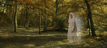 Gespenstische Zahl, die durch Autumn Forest gleitet Lizenzfreie Stockbilder