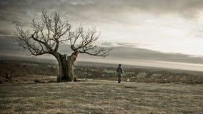 Gespenstischer Baum mit einsamer Frau Lizenzfreies Stockbild