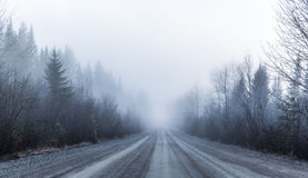 Gespenstischer Nebel und schlechte Sicht auf einer Landstraße im Wald lizenzfreie stockbilder