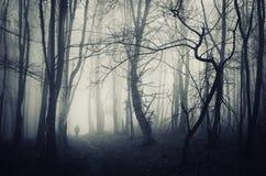 Gespenstischer Wald mit dem Mann, der auf einen dunklen Weg geht Stockbilder