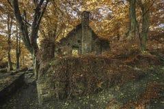 Gespenstisches altes ruiniertes aufgegebenes Gebäude im dichten Fallwald-landsca stockbild