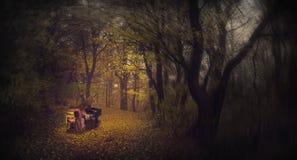 Gespenstisches Mädchen, welches das Klavier in einem nebeligen Wald spielt Stockfoto