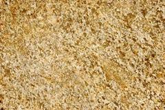 Gespikkelde Gouden Rots Royalty-vrije Stock Afbeelding