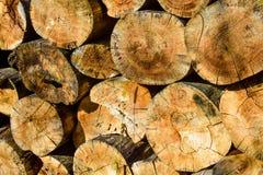 Gespleten Logboeken Abstracte Cirkels Als achtergrond stock foto