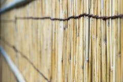 Gesponnener Bambus Stockbilder