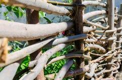 Gesponnener Bretterzaun hergestellt von den dünnen alten Zweigen Lizenzfreie Stockbilder
