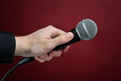Gesprek met microfoon Stock Fotografie